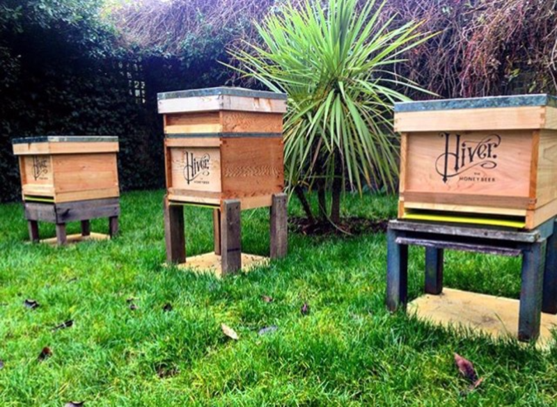 Beer & Beekeeping Masterclass