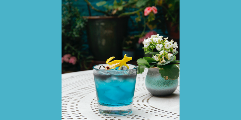 Casita Andina & The Curious Incident of the Dog In the Night-Time Cocktail Collaboration
