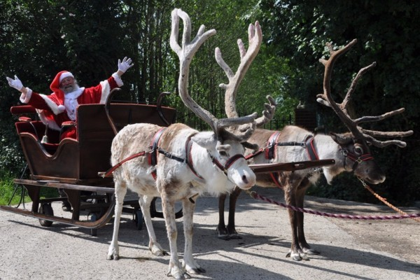 Santa and his reindeer come to The Bell!