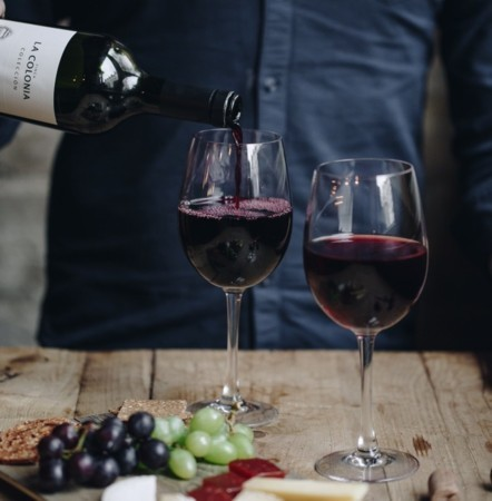 Pinot Noir Shakedown