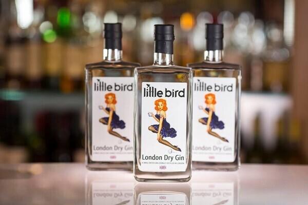 Little Bird Gin Sampling Session