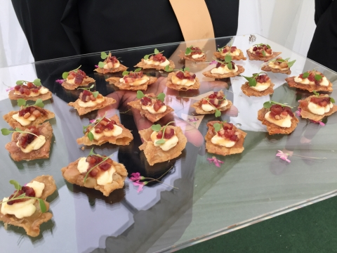 Canapes, VIP Area at Chelsea Live 2015